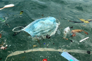 Image courtesy: https://maritimeindia.org/covid-19-and-india-the-challenge-of-marine-debris/